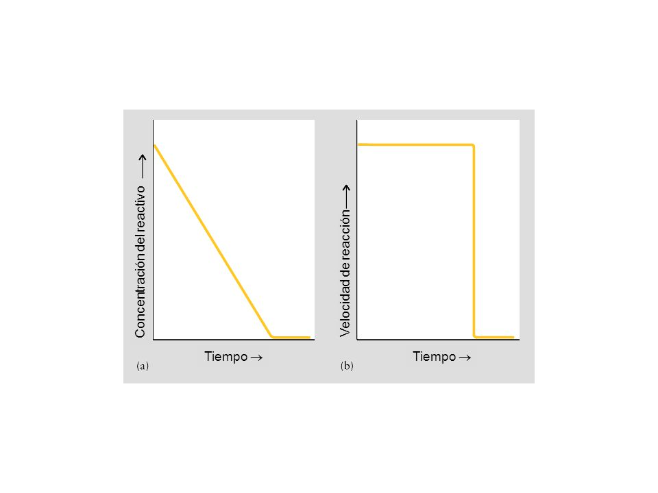 Tiempo Concentración del reactivo Velocidad de reacción