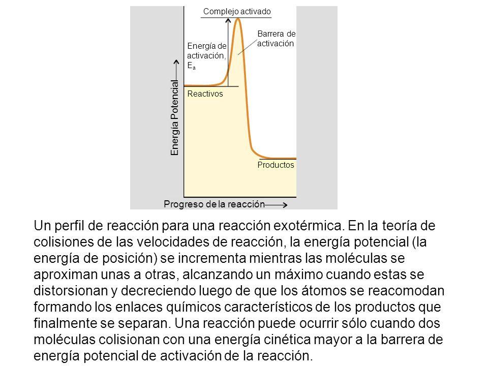 Un perfil de reacción para una reacción exotérmica. En la teoría de colisiones de las velocidades de reacción, la energía potencial (la energía de pos