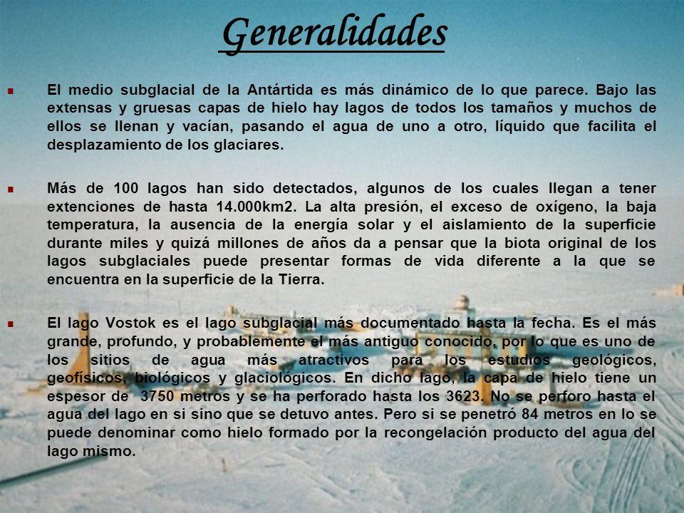Generalidades El medio subglacial de la Antártida es más dinámico de lo que parece. Bajo las extensas y gruesas capas de hielo hay lagos de todos los