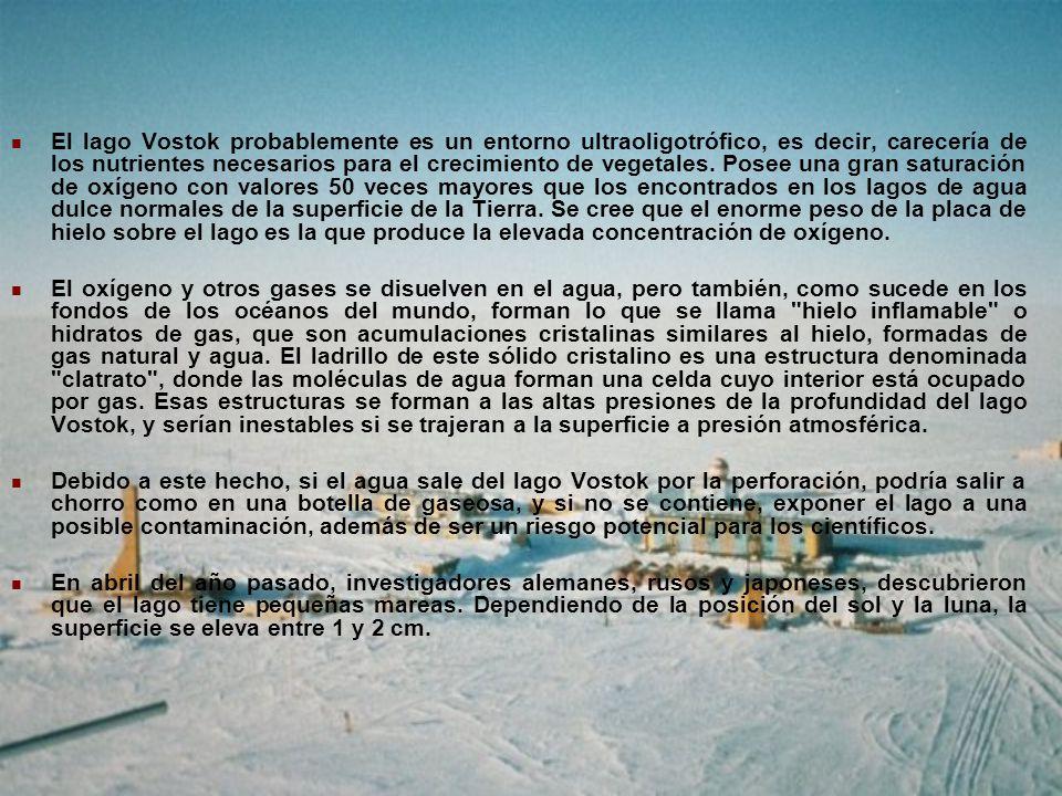 El lago Vostok probablemente es un entorno ultraoligotrófico, es decir, carecería de los nutrientes necesarios para el crecimiento de vegetales. Posee