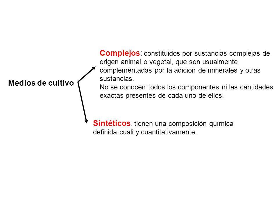 Medios de cultivo Sintéticos: tienen una composición química definida cuali y cuantitativamente. Complejos: constituidos por sustancias complejas de o