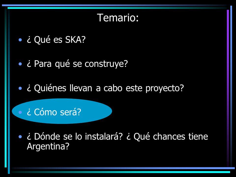 Temario: ¿ Qué es SKA? ¿ Para qué se construye? ¿ Quiénes llevan a cabo este proyecto? ¿ Cómo será? ¿ Dónde se lo instalará? ¿ Qué chances tiene Argen