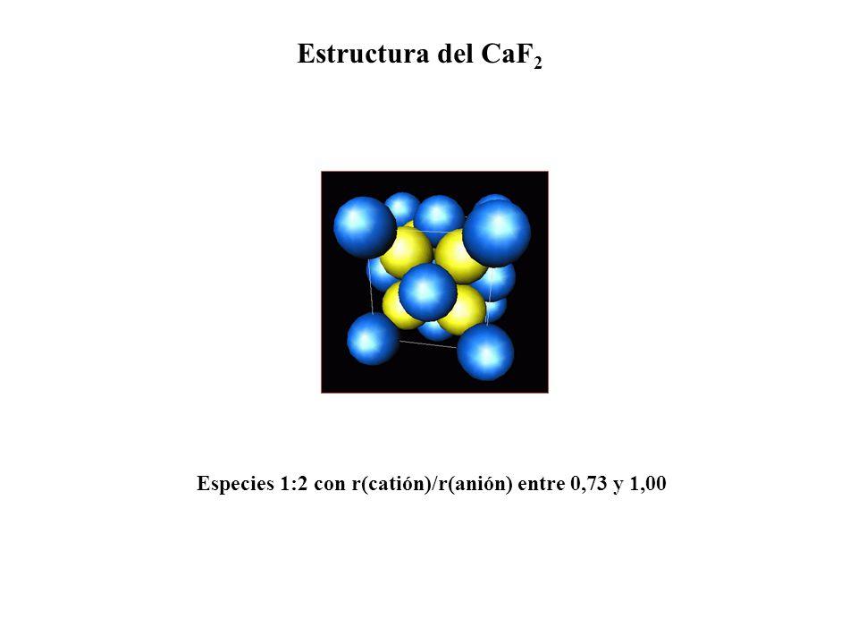 Estructura del CaF 2 Especies 1:2 con r(catión)/r(anión) entre 0,73 y 1,00