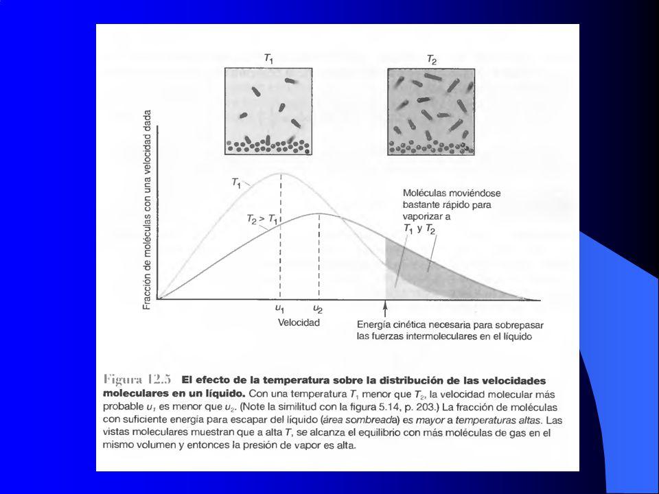 Ecuación de Clapeyron P T dT dP dG m = V m dP - S m dT condición de equilibrio termodinámico : G m,α = G m,β Para un cambio infinitesimal en P y T: dG m, = dG m, V m, dP - S m, dT = V m, dP - S m, dT A(1 mol, fase )A(1 mol, fase ) (S m, - S m, )dT = (V m, -V m, )dP (dP/dT) = (S m, - S m, ) / (V m, -V m, ) (dP/dT) = S m, / V m,