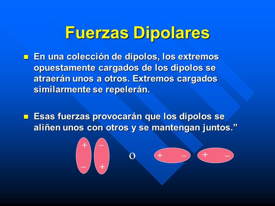 En una colección de dipolos, los extremos opuestamente cargados de los dipolos se atraerán unos a otros. Extremos cargados similarmente se repelerán.
