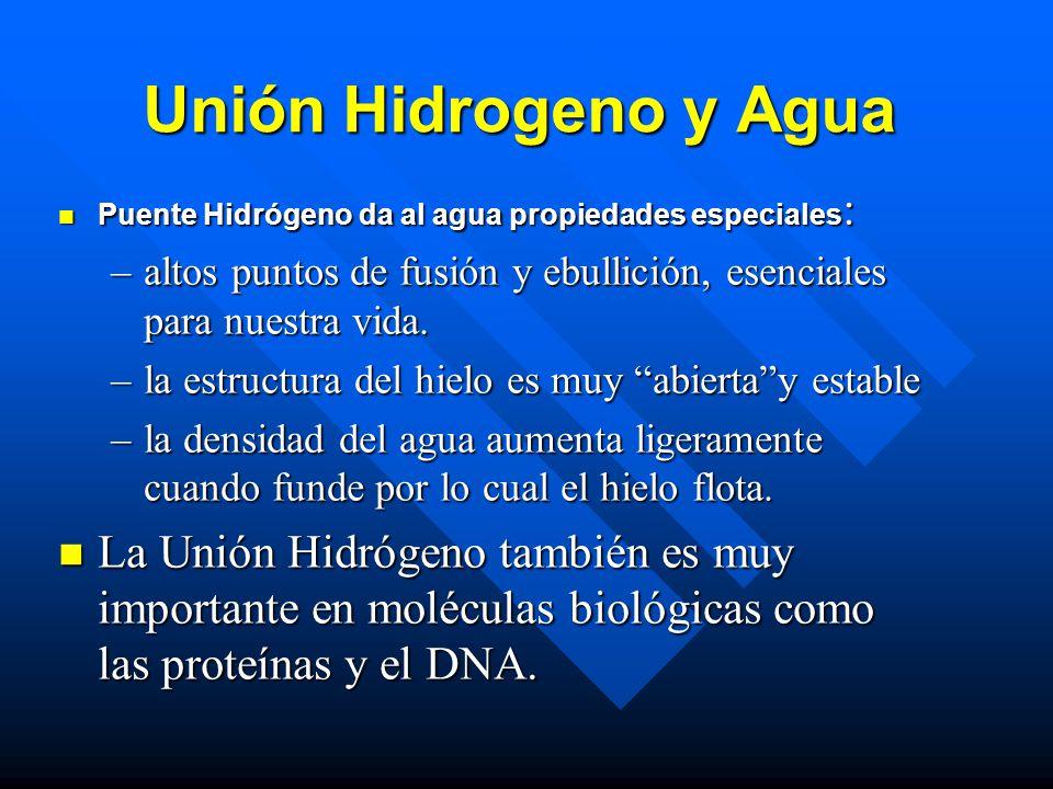 Unión Hidrogeno y Agua Puente Hidrógeno da al agua propiedades especiales : Puente Hidrógeno da al agua propiedades especiales : –altos puntos de fusión y ebullición, esenciales para nuestra vida.