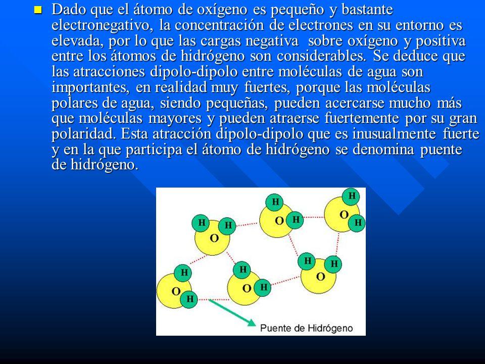 Dado que el átomo de oxígeno es pequeño y bastante electronegativo, la concentración de electrones en su entorno es elevada, por lo que las cargas neg