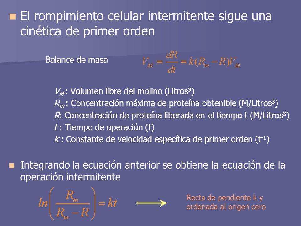 El rompimiento celular intermitente sigue una cinética de primer orden Balance de masa V M : Volumen libre del molino (Litros 3 ) R m : Concentración