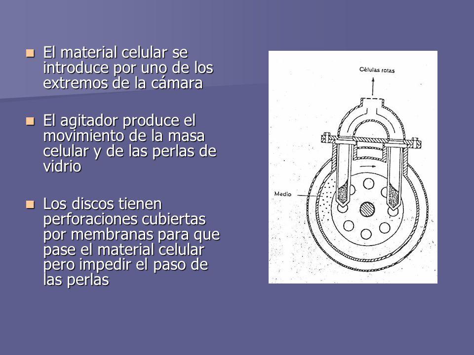 El material celular se introduce por uno de los extremos de la cámara El material celular se introduce por uno de los extremos de la cámara El agitado