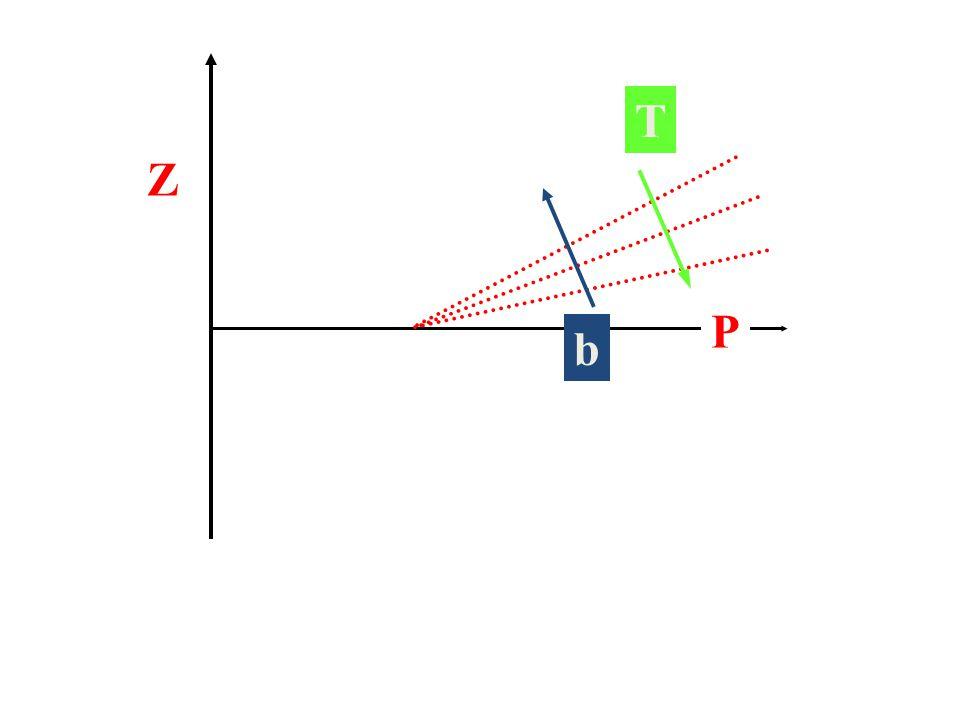 Z P b T