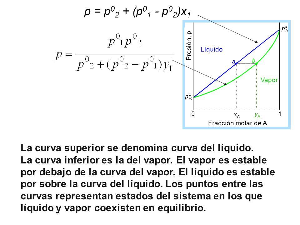 La curva superior se denomina curva del líquido. La curva inferior es la del vapor. El vapor es estable por debajo de la curva del vapor. El líquido e