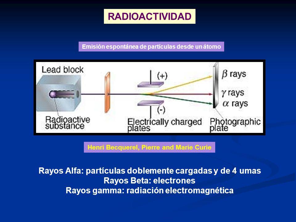 RADIOACTIVIDAD Rayos Alfa: partículas doblemente cargadas y de 4 umas Rayos Beta: electrones Rayos gamma: radiación electromagnética Emisión espontáne