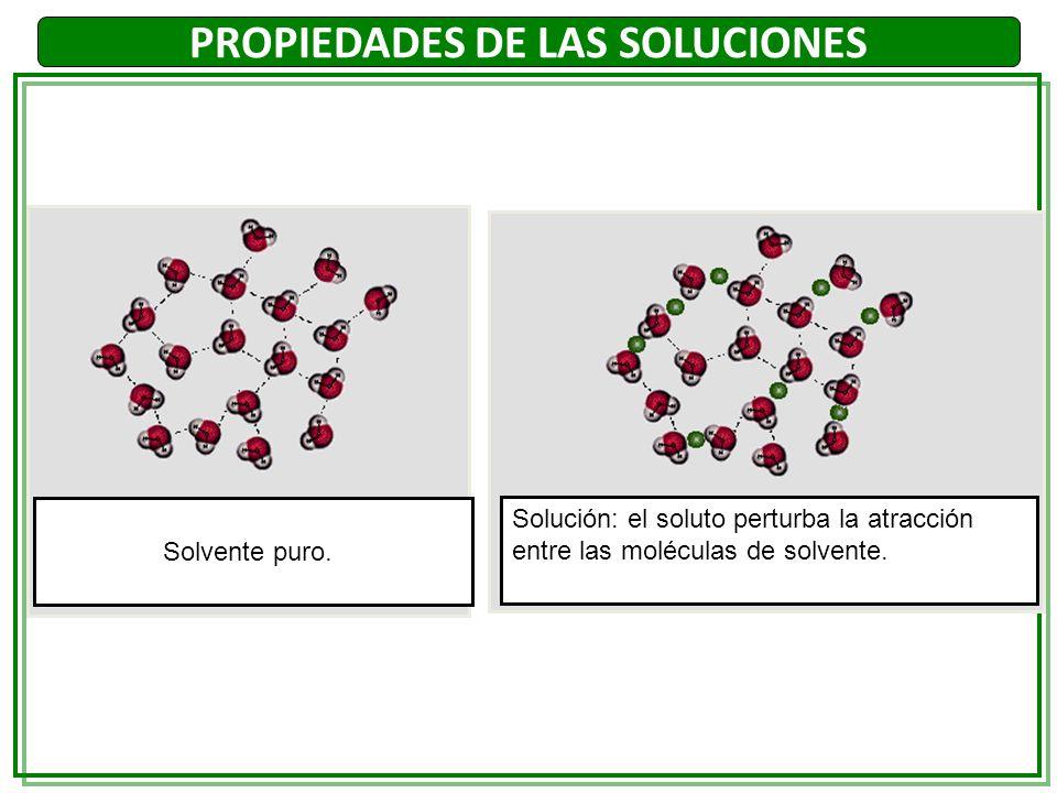 PROPIEDADES DE LAS SOLUCIONES Solvente puro. Solución: el soluto perturba la atracción entre las moléculas de solvente.