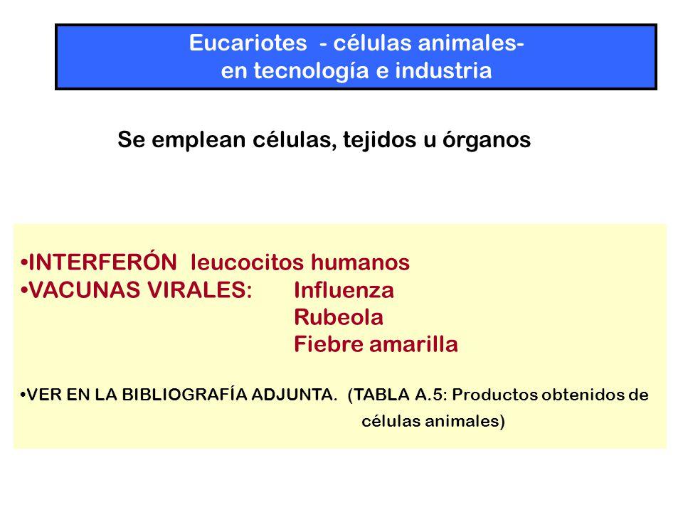 INTERFERÓN leucocitos humanos VACUNAS VIRALES: Influenza Rubeola Fiebre amarilla VER EN LA BIBLIOGRAFÍA ADJUNTA.