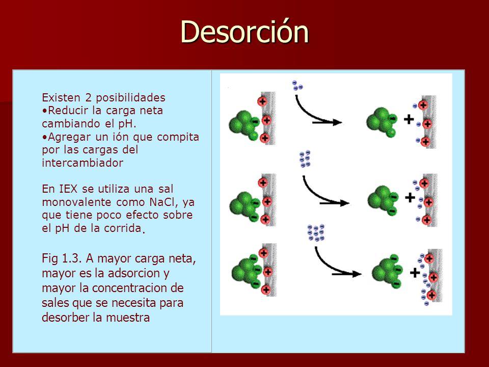 Desorción Existen 2 posibilidades Reducir la carga neta cambiando el pH. Agregar un ión que compita por las cargas del intercambiador En IEX se utiliz