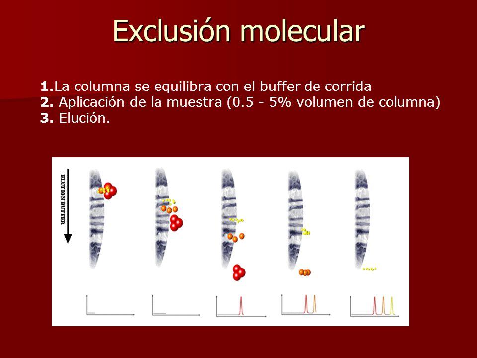 . 1.La columna se equilibra con el buffer de corrida 2. Aplicación de la muestra (0.5 - 5% volumen de columna) 3. Elución. Exclusión molecular