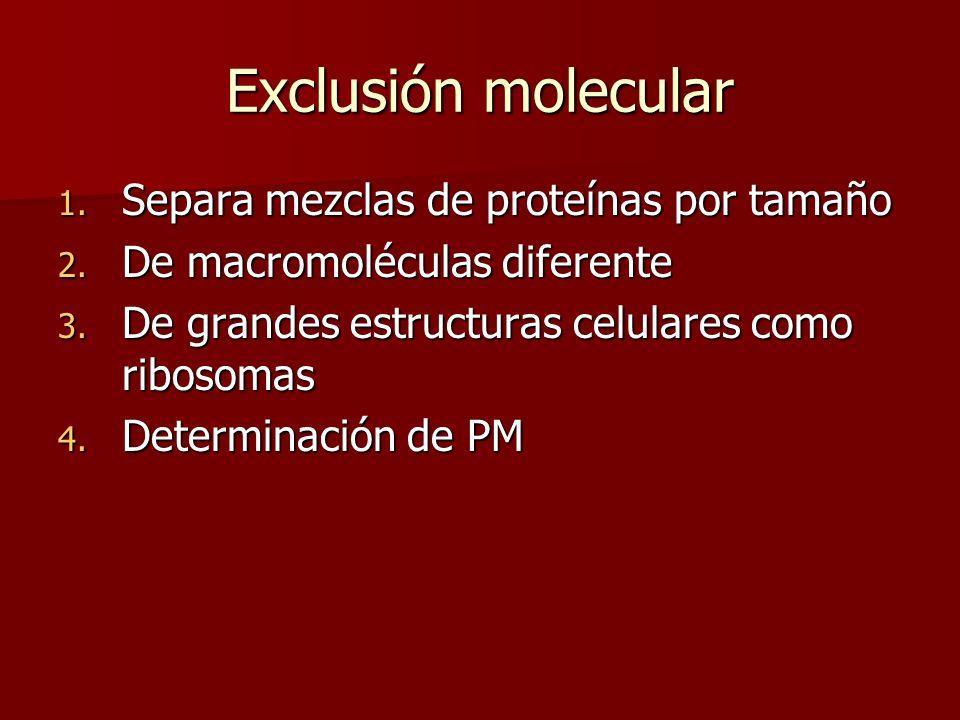 1. Separa mezclas de proteínas por tamaño 2. De macromoléculas diferente 3. De grandes estructuras celulares como ribosomas 4. Determinación de PM