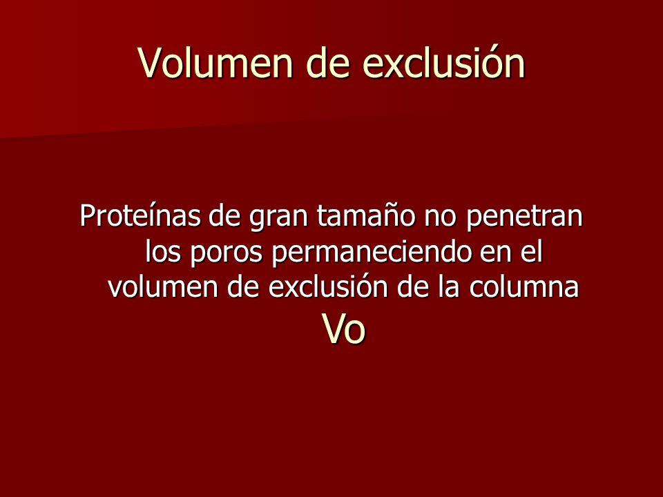 Volumen de exclusión Proteínas de gran tamaño no penetran los poros permaneciendo en el volumen de exclusión de la columna Vo