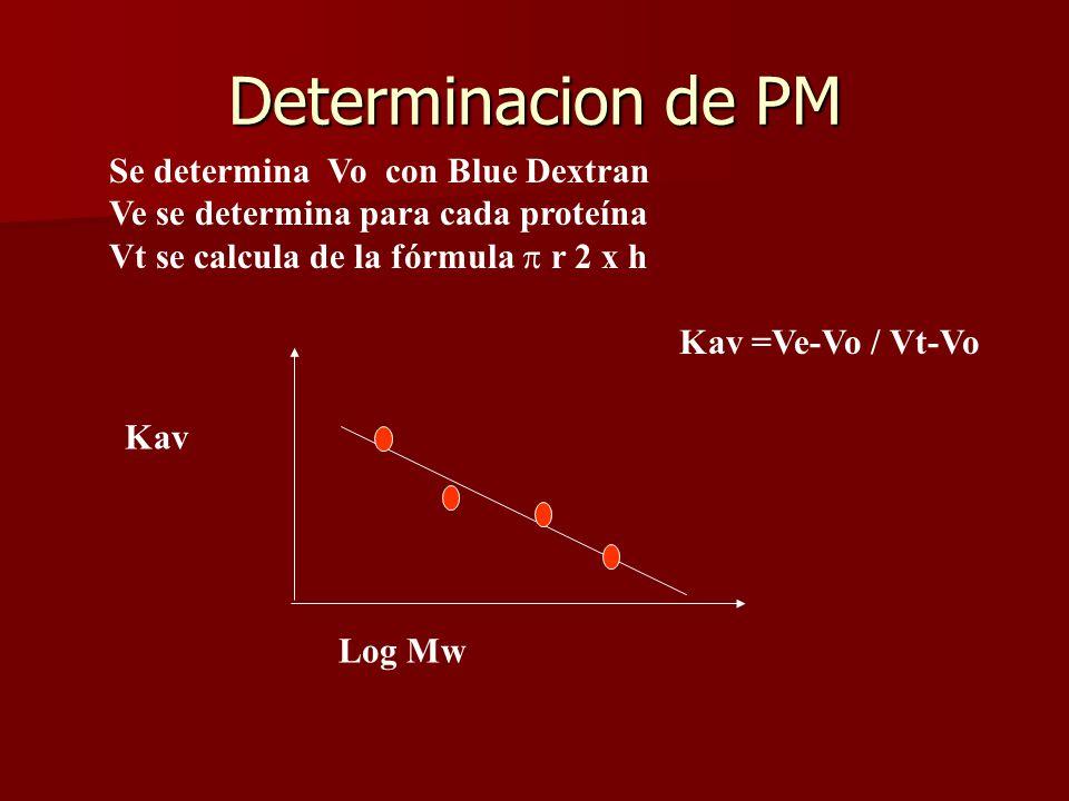 Se determina Vo con Blue Dextran Ve se determina para cada proteína Vt se calcula de la fórmula r 2 x h Kav =Ve-Vo / Vt-Vo Kav Log Mw Determinacion de