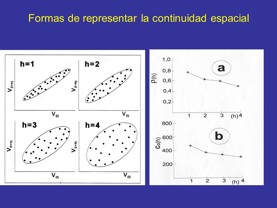 Formas de representar la continuidad espacial