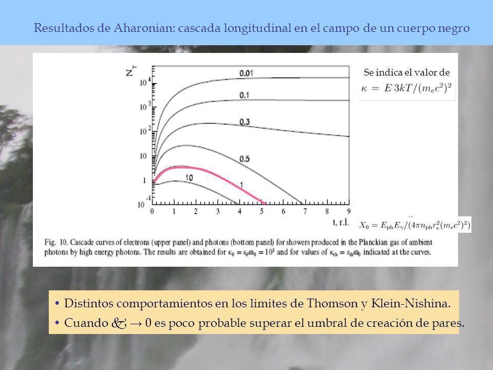 Resultados de Aharonian: cascada longitudinal en el campo de un cuerpo negro Distintos comportamientos en los limites de Thomson y Klein-Nishina.