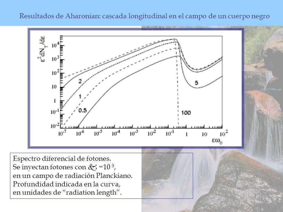 Espectro diferencial de fotones.