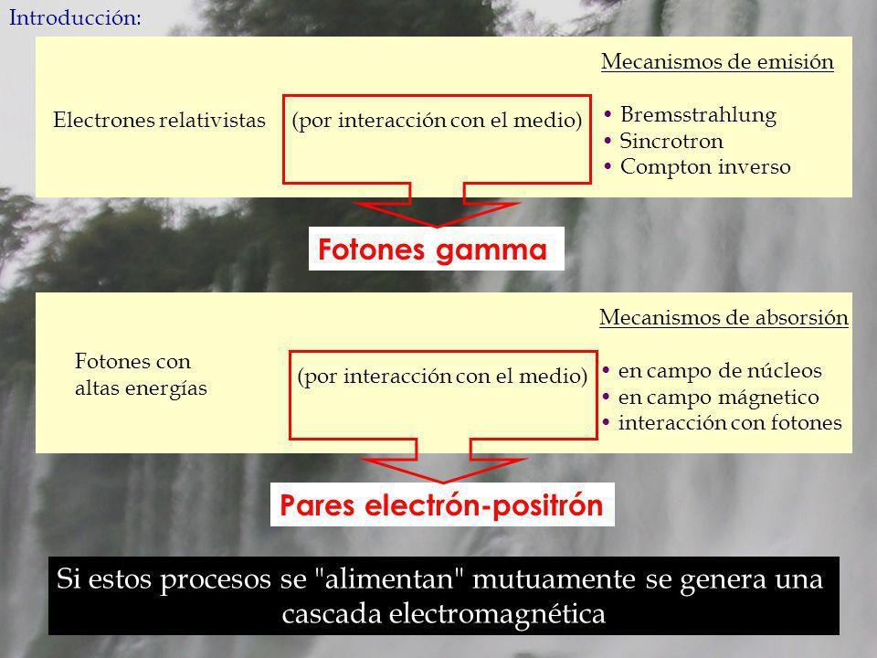Introducción: Electrones relativistas(por interacción con el medio) Mecanismos de emisión Bremsstrahlung Sincrotron Compton inverso Fotones con altas energías (por interacción con el medio) Mecanismos de absorsión en campo de núcleos en campo mágnetico interacción con fotones Fotones gammaPares electrón-positrón Si estos procesos se alimentan mutuamente se genera una cascada electromagnética
