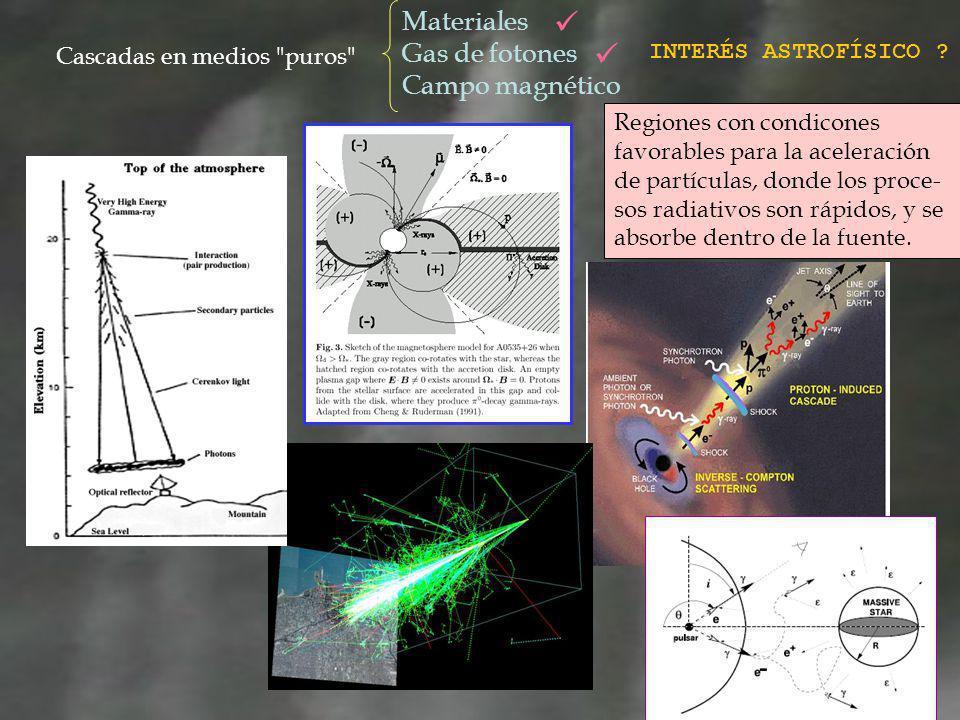 Conclusiones y proyectos a futuro Contamos con un código para la simulación de cascadas IC unidimensionales originadas en proximidades de una estrella, que incorpora correctamente la geometría.