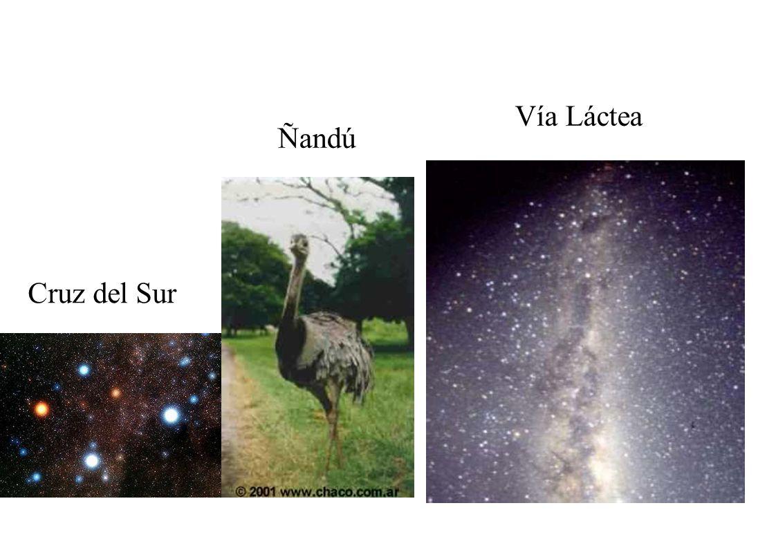 Cruz del Sur Vía Láctea Ñandú