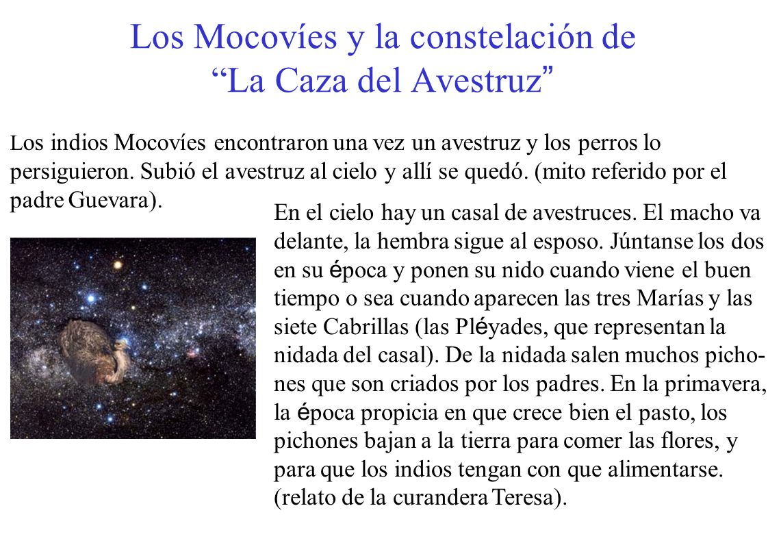 Los Mocovíes y la constelación de La Caza del Avestruz En el cielo hay un casal de avestruces. El macho va delante, la hembra sigue al esposo. Júntans