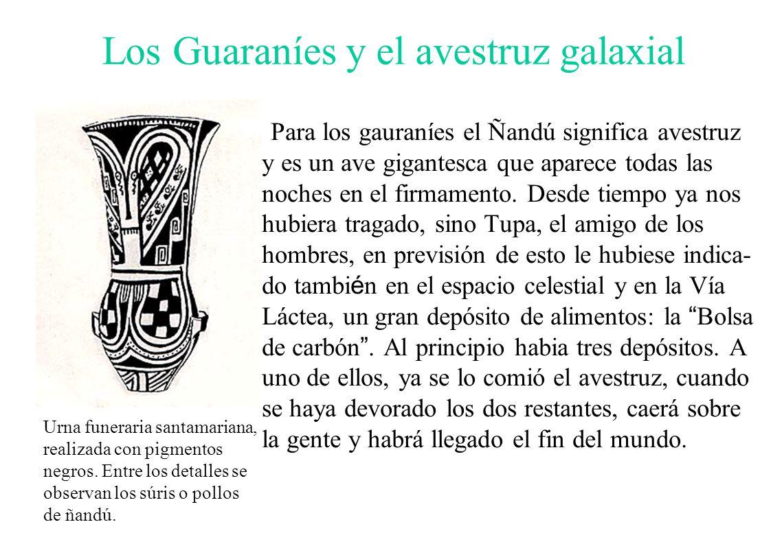 Los Guaraníes y el avestruz galaxial Para los gauraníes el Ñandú significa avestruz y es un ave gigantesca que aparece todas las noches en el firmamen