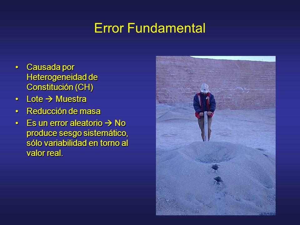 Error Fundamental Causada por Heterogeneidad de Constitución (CH)Causada por Heterogeneidad de Constitución (CH) Lote MuestraLote Muestra Reducción de