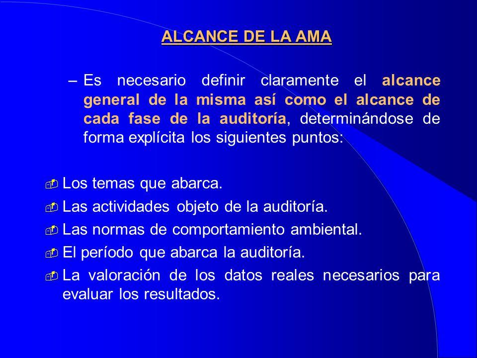 –Es necesario definir claramente el alcance general de la misma así como el alcance de cada fase de la auditoría, determinándose de forma explícita lo