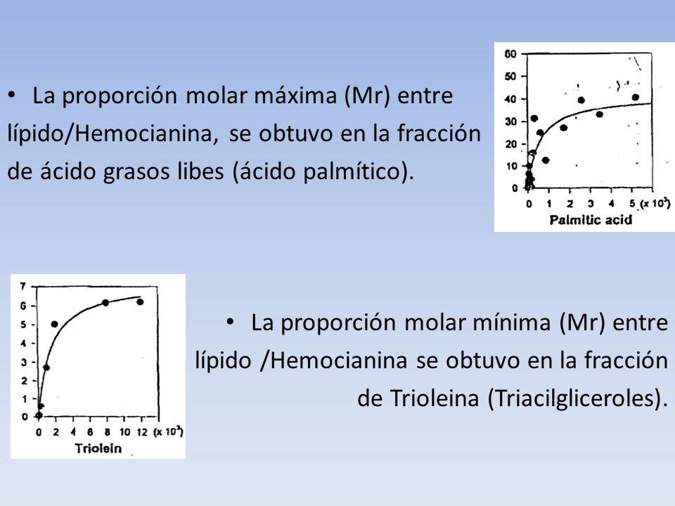 La proporción molar máxima (Mr) entre lípido/Hemocianina, se obtuvo en la fracción de ácido grasos libes (ácido palmítico). La proporción molar mínima