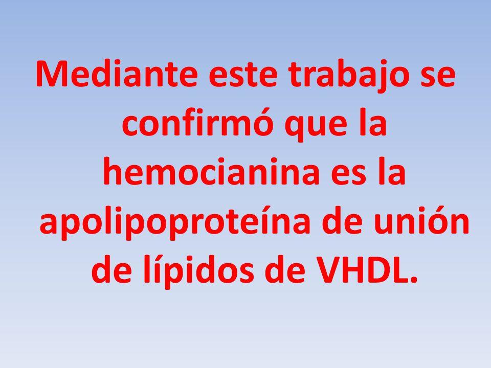 Mediante este trabajo se confirmó que la hemocianina es la apolipoproteína de unión de lípidos de VHDL.