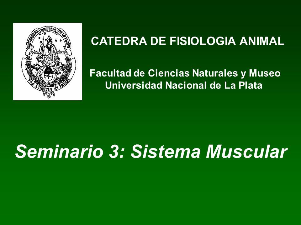 CATEDRA DE FISIOLOGIA ANIMAL Facultad de Ciencias Naturales y Museo Universidad Nacional de La Plata Seminario 3: Sistema Muscular