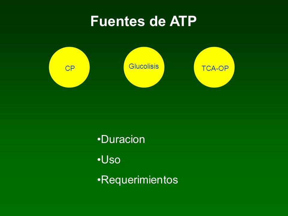 Fuentes de ATP Duracion Uso Requerimientos CP Glucolisis TCA-OP