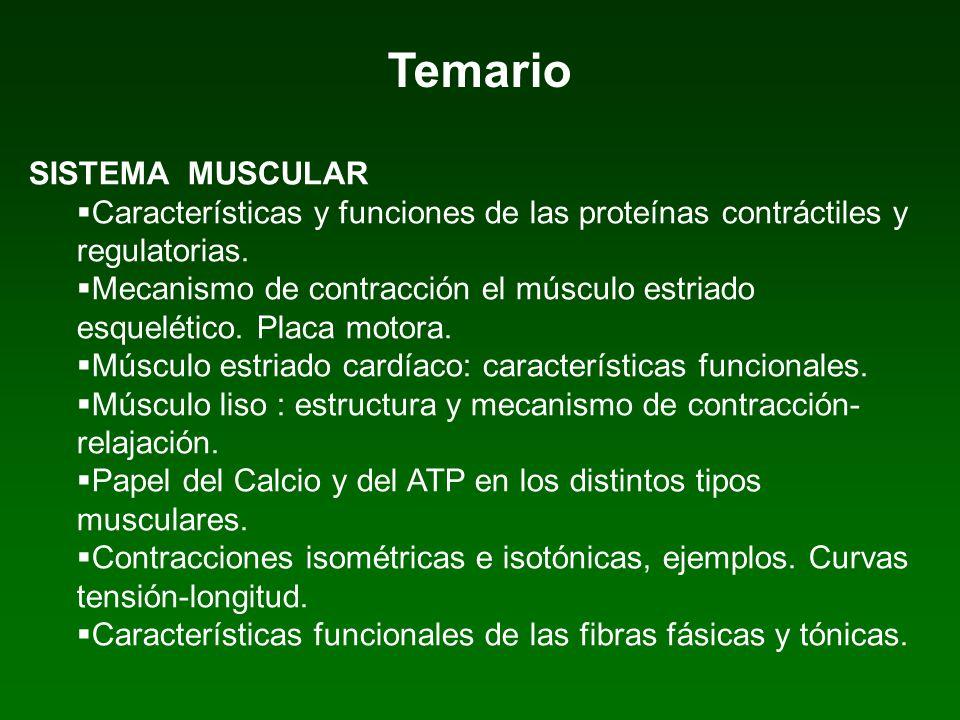 SISTEMA MUSCULAR Características y funciones de las proteínas contráctiles y regulatorias. Mecanismo de contracción el músculo estriado esquelético. P