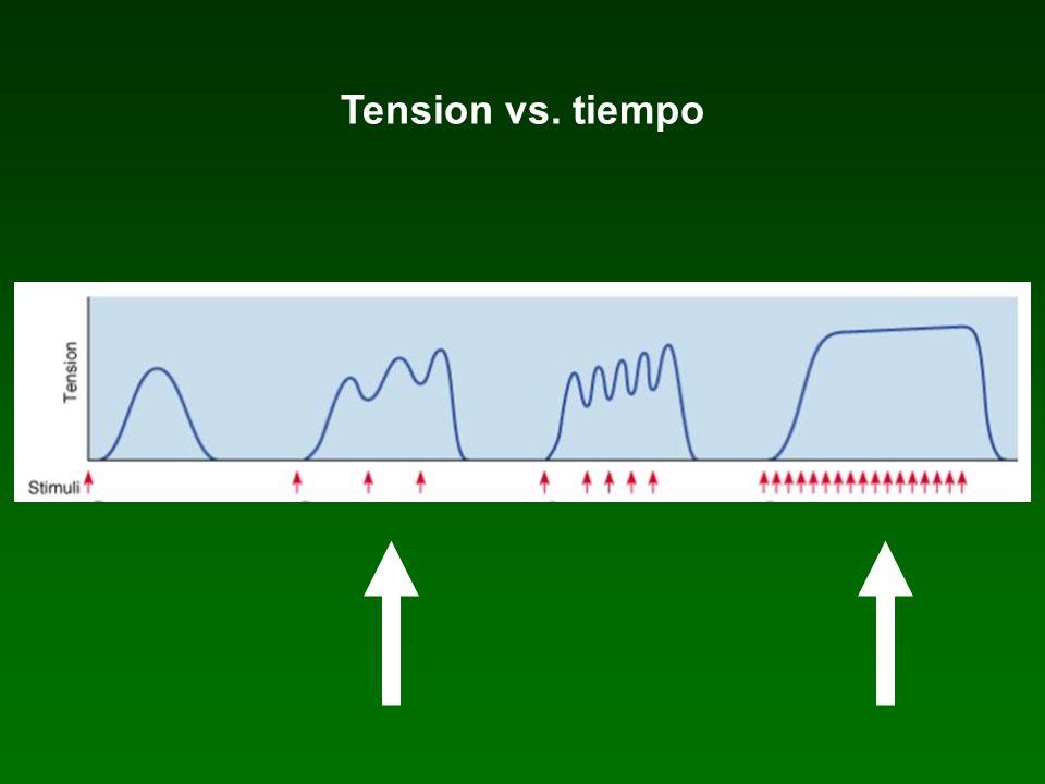 Tension vs. tiempo