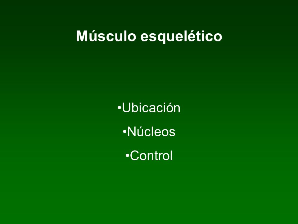 Músculo liso : estructura y mecanismo de contracción-relajación. Ubicación Núcleos Control Uniones