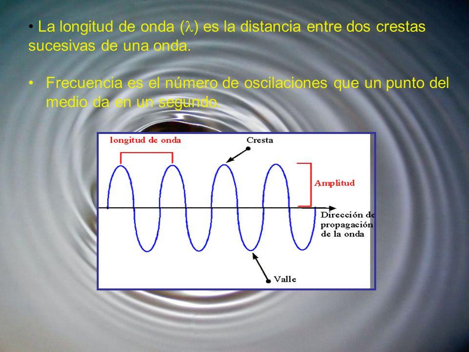 La longitud de onda ( ) es la distancia entre dos crestas sucesivas de una onda.