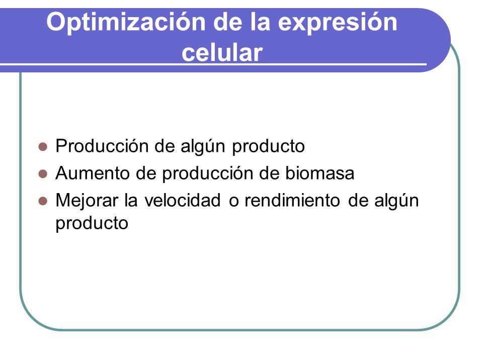 Optimización de la expresión celular Producción de algún producto Aumento de producción de biomasa Mejorar la velocidad o rendimiento de algún producto