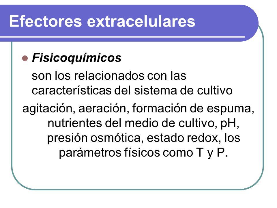 Efectores extracelulares Fisicoquímicos son los relacionados con las características del sistema de cultivo agitación, aeración, formación de espuma, nutrientes del medio de cultivo, pH, presión osmótica, estado redox, los parámetros físicos como T y P.