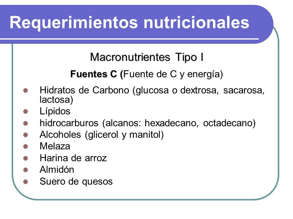 Requerimientos nutricionales Macronutrientes Tipo I Fuentes C ( Fuentes C (Fuente de C y energía) Hidratos de Carbono (glucosa o dextrosa, sacarosa, lactosa) Lípidos hidrocarburos (alcanos: hexadecano, octadecano) Alcoholes (glicerol y manitol) Melaza Harina de arroz Almidón Suero de quesos