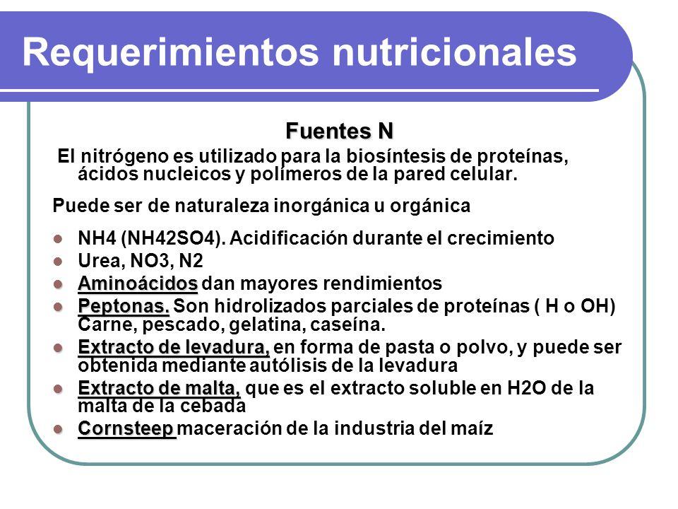 Requerimientos nutricionales Macronutrientes Tipo II PS P y el S son suministrados en forma de P04H y S04 (o aminoácidos azufrados) El P se incorpora en ácidos nucleicos, y polímeros celulares.