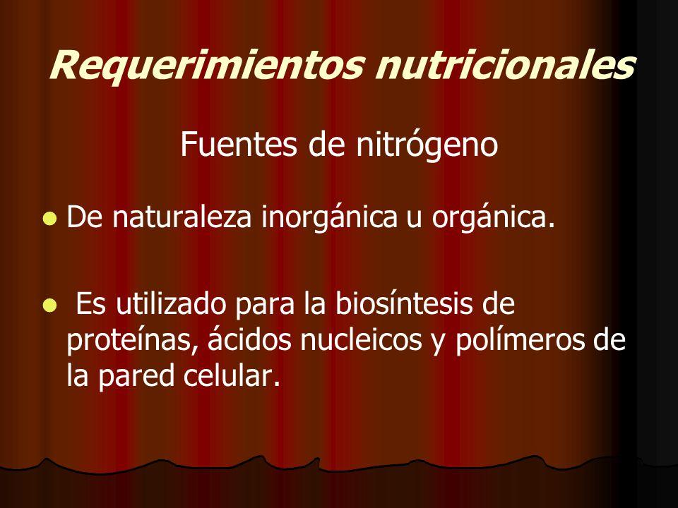 Requerimientos nutricionales Fuentes de nitrógeno De naturaleza inorgánica u orgánica.
