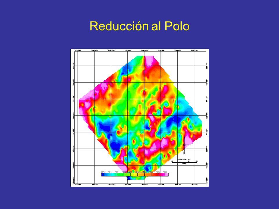 Reducción al Polo