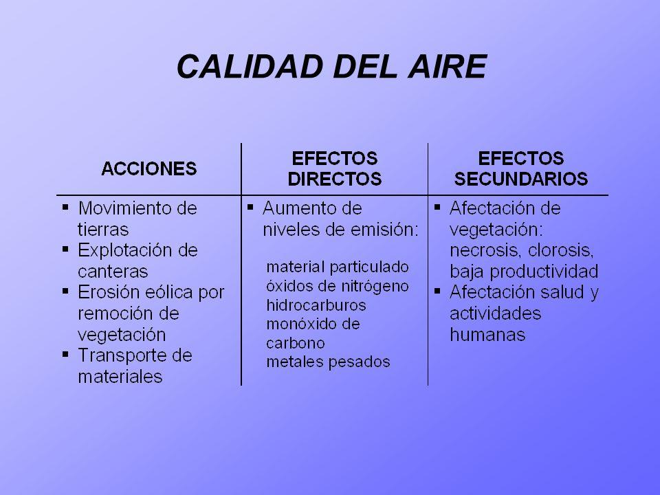 CALIDAD DEL AIRE - RUIDOS