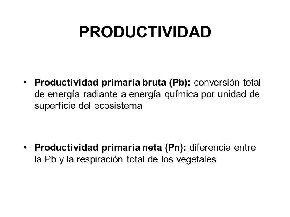 PRODUCTIVIDAD Productividad primaria bruta (Pb): conversión total de energía radiante a energía química por unidad de superficie del ecosistema Produc