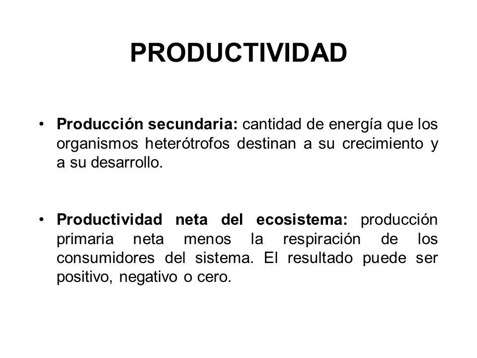PRODUCTIVIDAD Producción secundaria: cantidad de energía que los organismos heterótrofos destinan a su crecimiento y a su desarrollo. Productividad ne